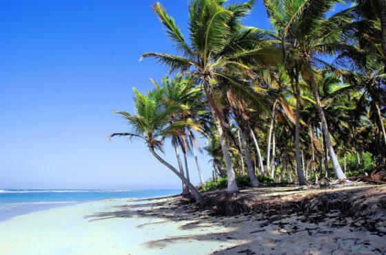dominican-republic-5107400_1280